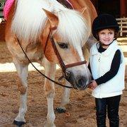 New York Equestrian Center 63 Photos Amp 18 Reviews