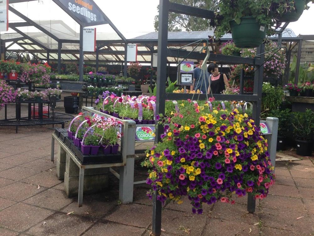 Garden World Nursery Yelp