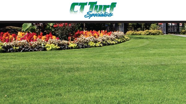 CT Turf Specialists - Landscaping - 1 Chestnut St, Ansonia, CT ...