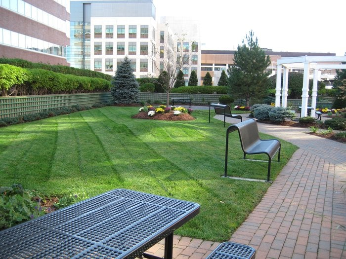 Roof Garden Cambridge Center Yelp