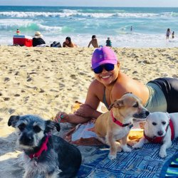 Devore Animal Shelter - 2019 All You Need to Know BEFORE You Go