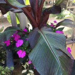 Beau Photo Of Berns Garden Center U0026 Landscaping   Middletown, OH, United States.  Love