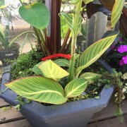 ... Photo Of Berns Garden Center U0026 Landscaping   Middletown, OH, United  States. Who ...