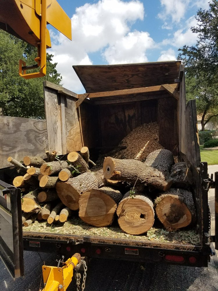 Aabear Tree Care: 351 Cole Dr, Liberty Hill, TX