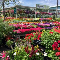 Lovely Photo Of Begick Nursery And Garden Center   Bay City, MI, United States. Good Looking