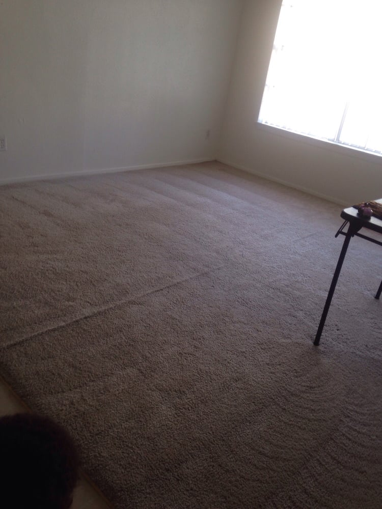 My son made a mess of this carpet and even spilled my ...