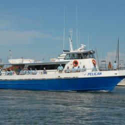 Deep sea headquarters 20 photos 15 reviews boat for Port aransas deep sea fishing