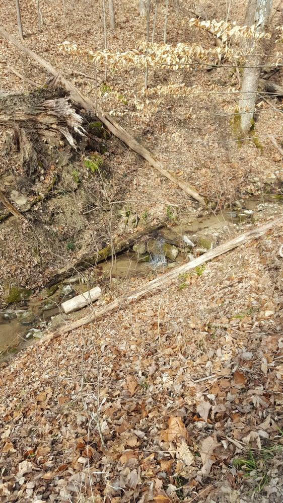 Boone Cliffs State Nature Preserve: Middle Creek Rd, Burlington, KY