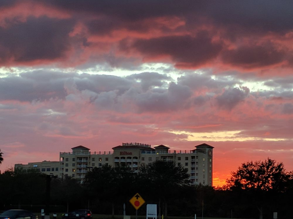 Hilton St Petersburg Carillon Park: 950 Lake Carillon Dr, Saint Petersburg, FL