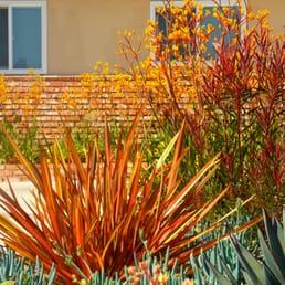 Photo Of Xeristyle Exterior Design   Fullerton, CA, United States. Orange  2014