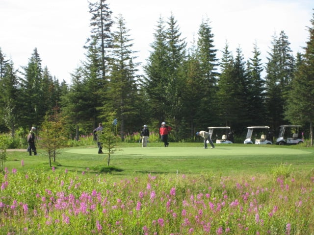 Fireweed Meadows Golf Course: 72749 Milo Fritz Ave, Anchor Point, AK