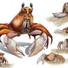 City Crab
