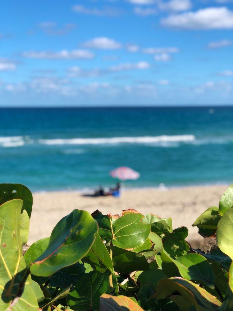 John D. MacArthur Beach State Park and Nature Center: 10900 Jack Nicklaus Dr, Palm Beach, FL