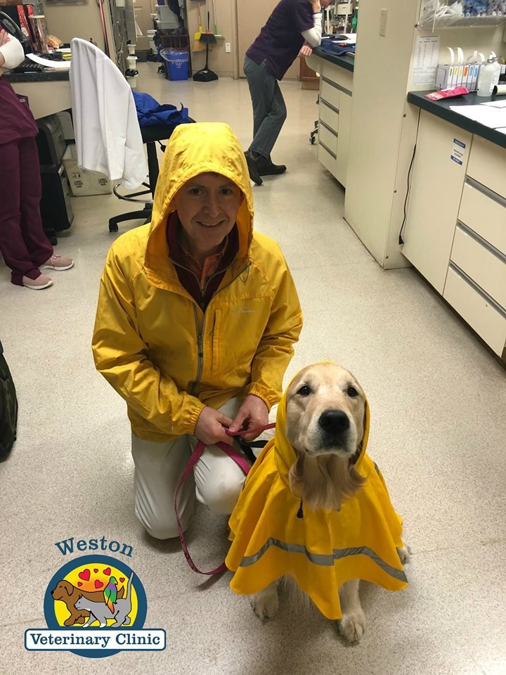 Weston Veterinary Clinic