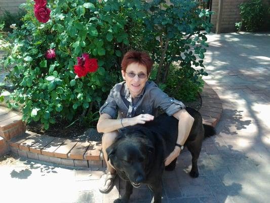 Therapy Dog Training Tucson Az