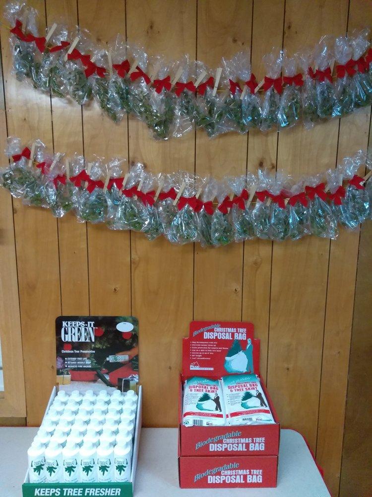 Photo of SASG Holiday Tree Lot - Seattle, WA, United States - Photos For SASG Holiday Tree Lot - Yelp