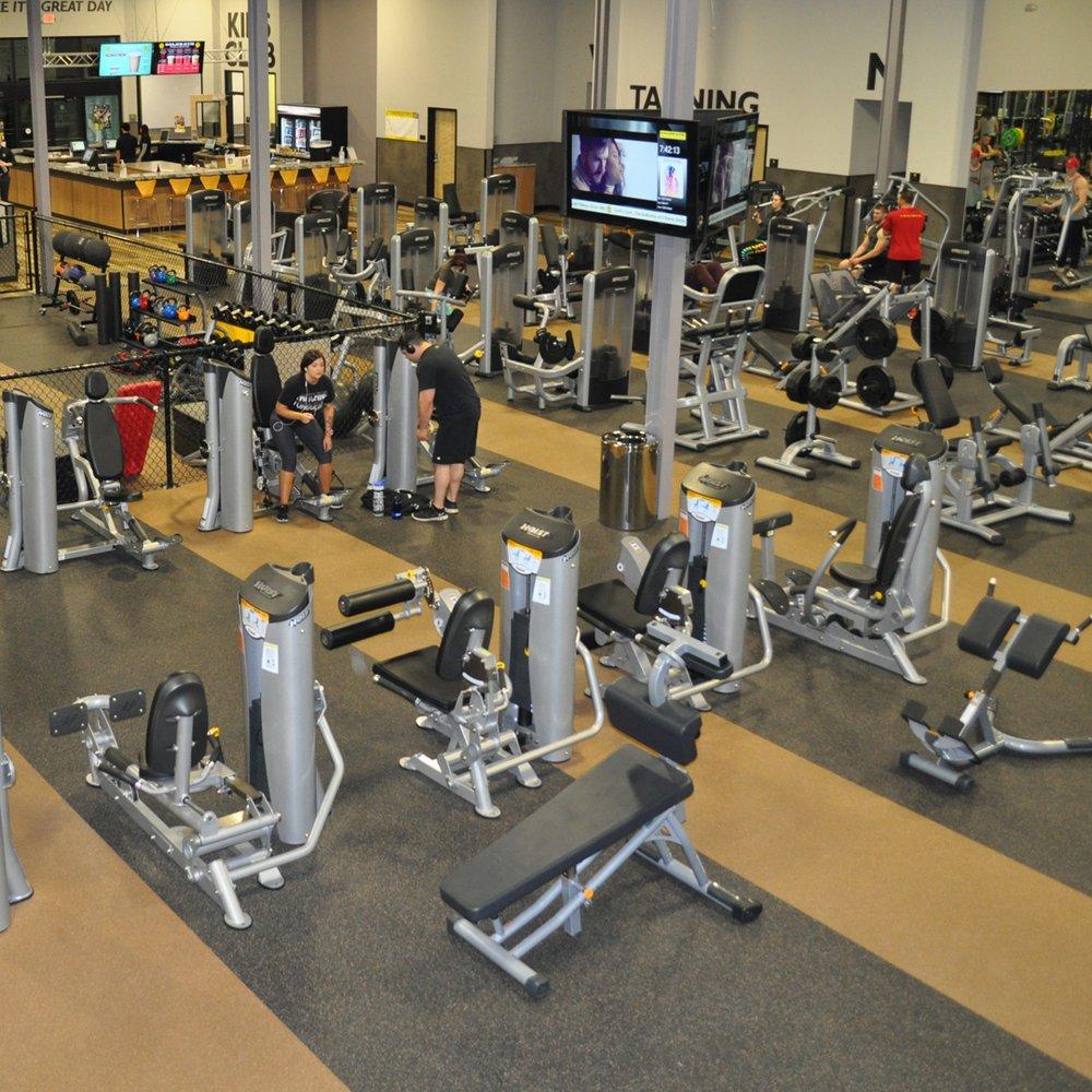 golds gym fitness equipment - 1000×1000