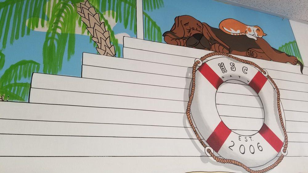 Houston Swim Club: 1711 N Fry Rd, Katy, TX