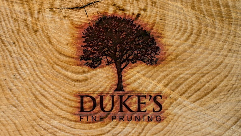 Dukes Fine Pruning: Victor, MT