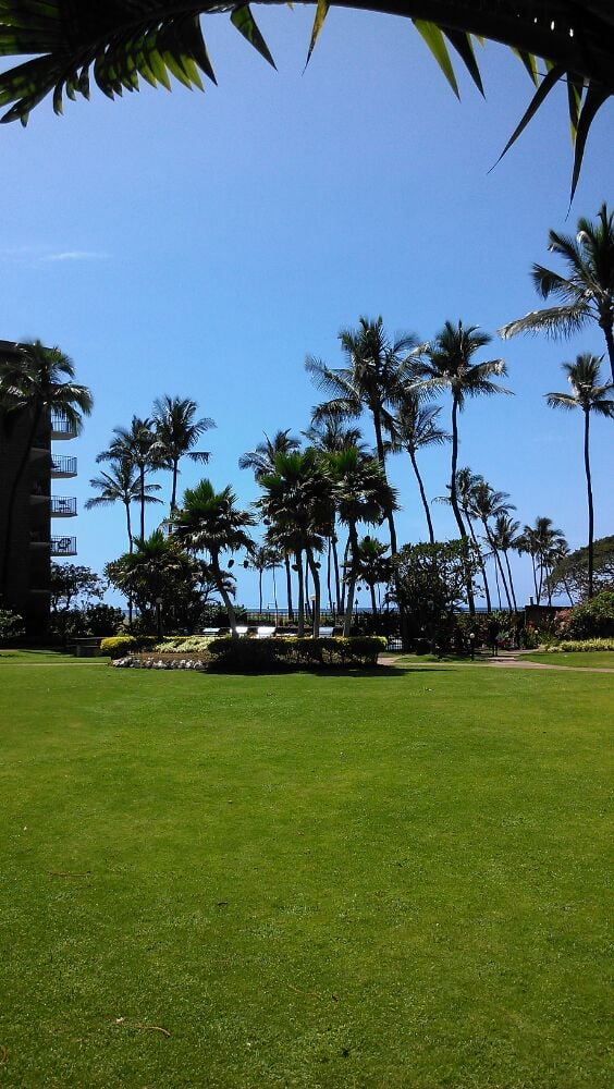 Royal Aloha- Village by the Sea - Slideshow Image 3