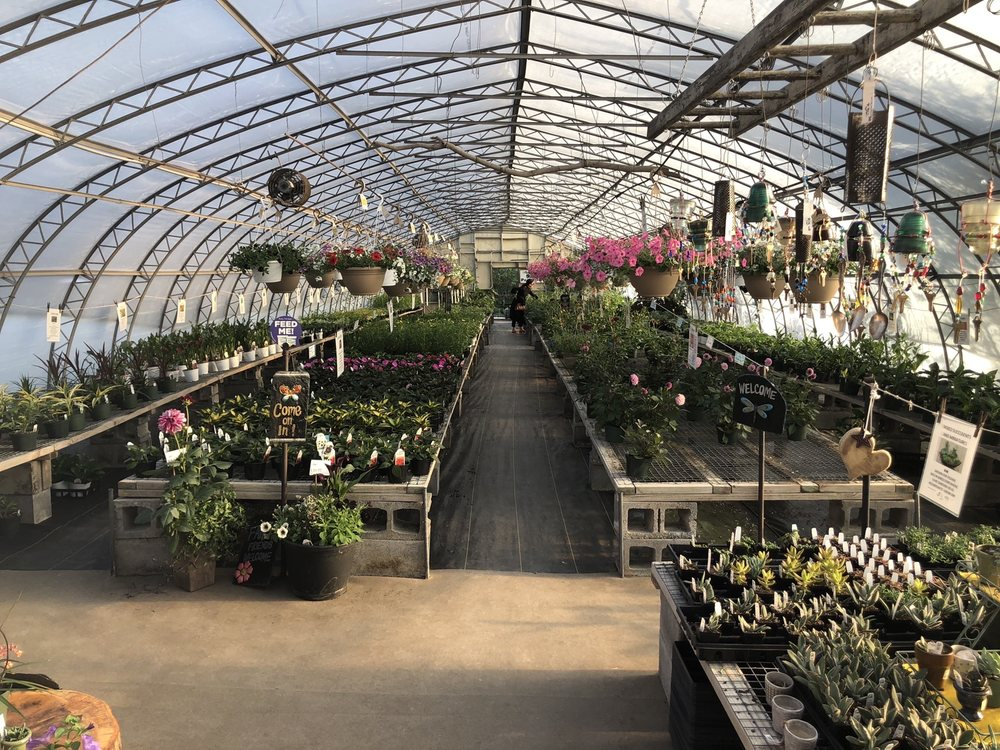 Groffs Plant Farm: 6128 Street Rd, Kirkwood, PA