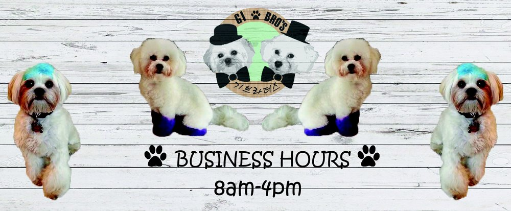 Gi Brothers Mobile Dog Grooming: Ellicott City, MD