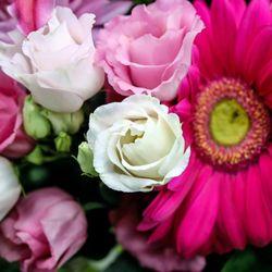 Photo of Vanessa's Flowers - Plymouth, MI, United States