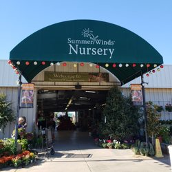 Summerwinds Nursery Tatum