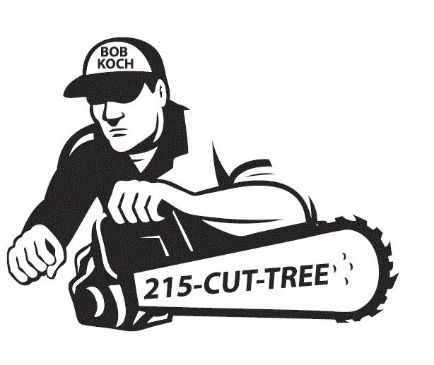 Bob Koch 215-Cut-Tree