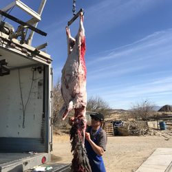 barstow country butchering butcher 29673 1st ave barstow ca