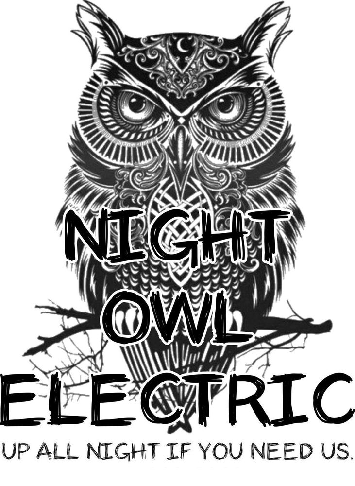 Night Owl Electric: 3692 Bell Arthur Rd, Greenville, NC