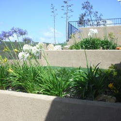 Photo Of Proscape Of San Diego   San Diego, CA, United States