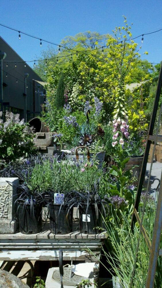 Photos for Terrain Garden Cafe - Yelp