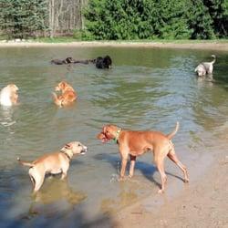 dog parks grand rapids mi