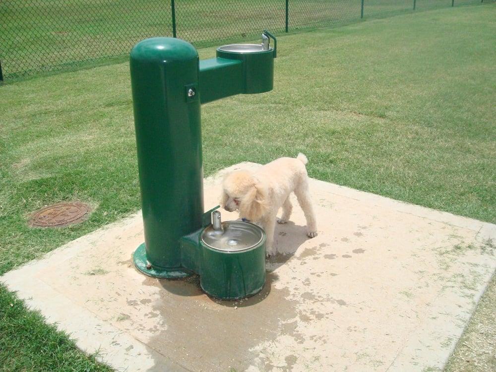 Dog Park Abilene Tx
