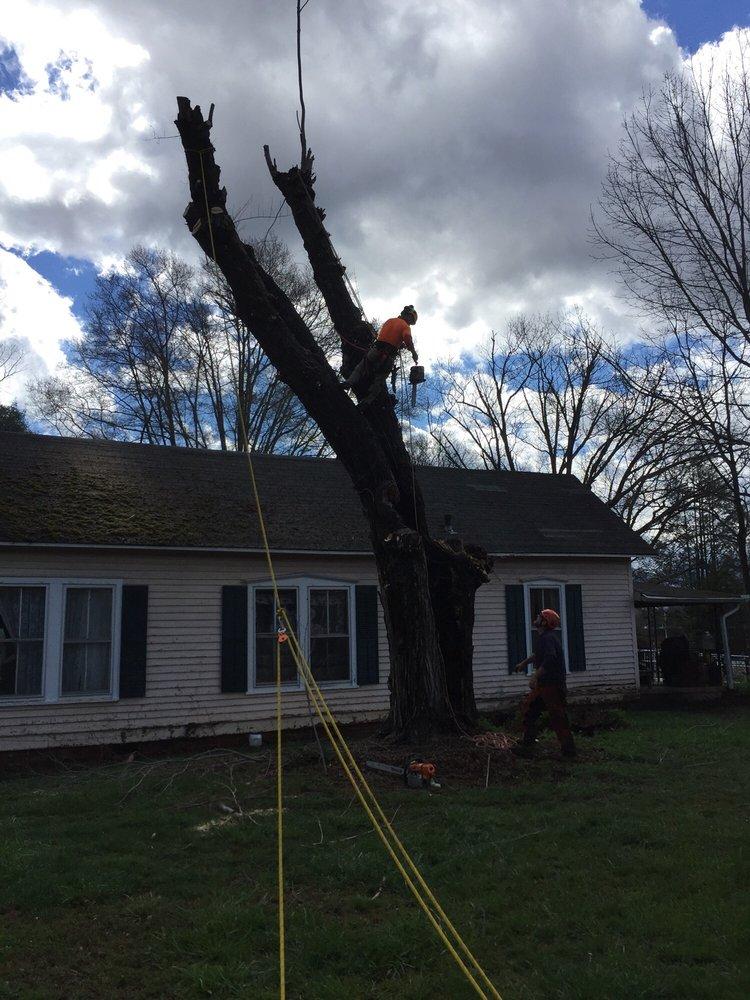 Earthworks Tree Services: 4380 Eller Ford Rd, Weaverville, NC