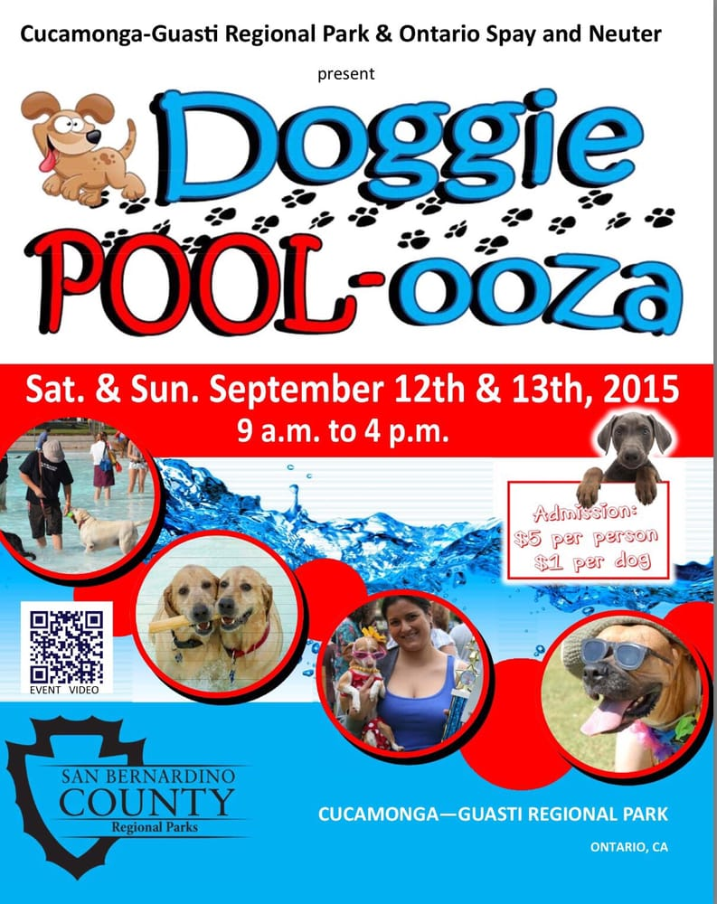 Photo of Doggie Poolooza: Ontario, CA