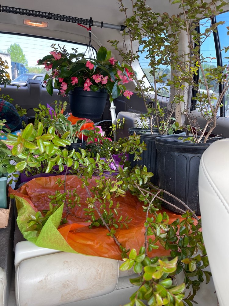 Flower Depot: 616A Highway 365, Mayflower, AR