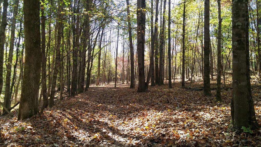 Taylorsville Lake State Park: 1320 Park Rd, Taylorsville, KY