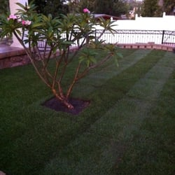 Superb Photo Of Tanu0027s Gardening Service   San Diego, CA, United States