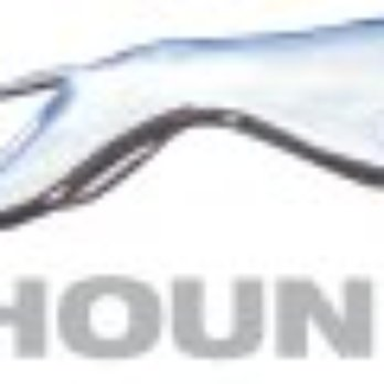 Can tickets be purchased at the Greyhound bus company website?