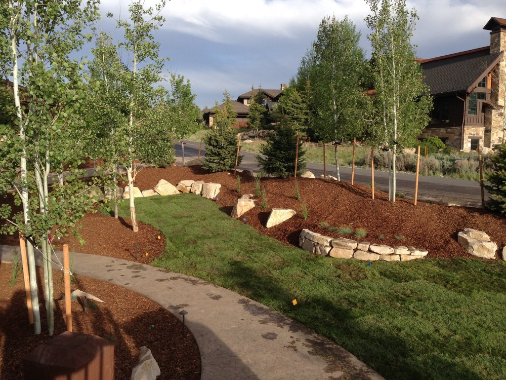 J & P Landscaping: Erie, CO