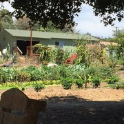 Stone Garden Farms Stone farms closed 88 photos 46 reviews breweries 9928 photo of stone farms escondido ca united states brewhouse with the garden workwithnaturefo