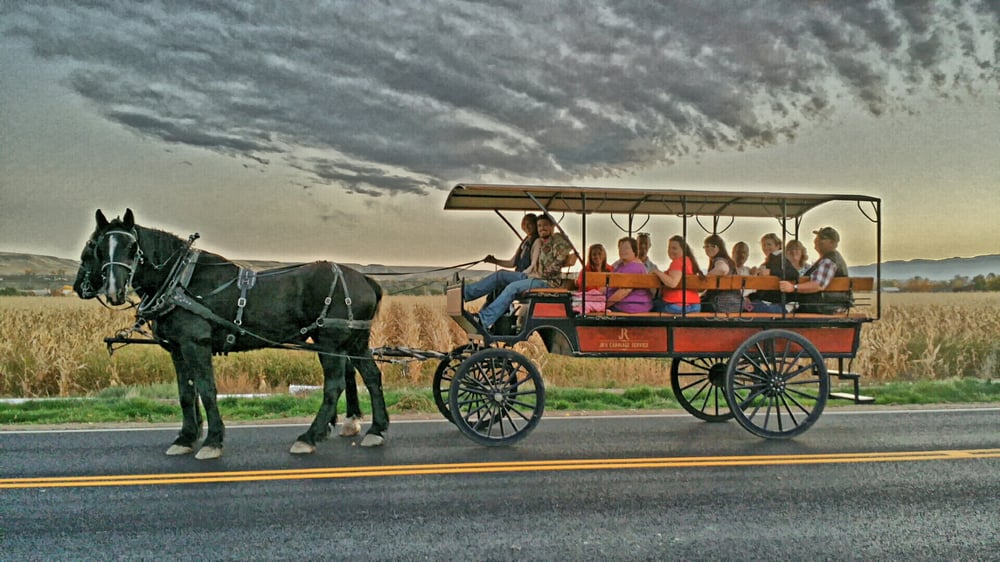 JR's Carriage Service: Palisade, CO