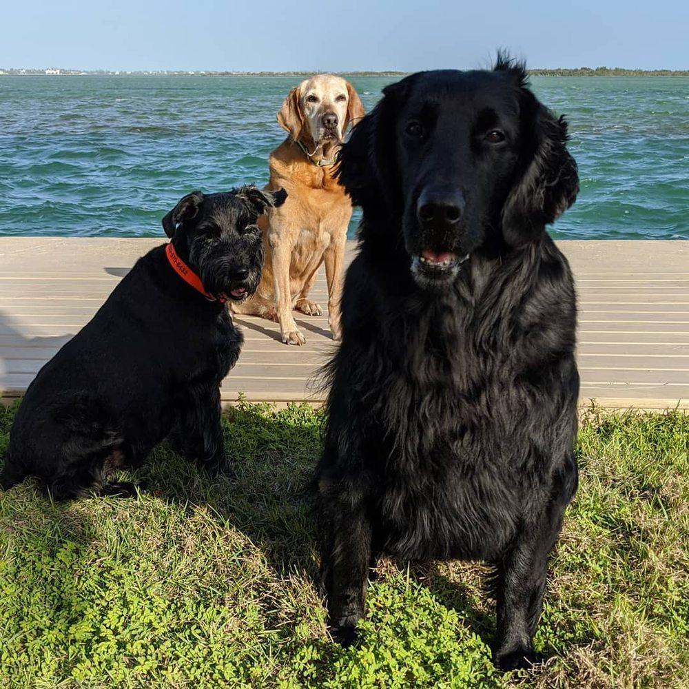 Keys Animal Care Center: 501 Overseas Highway Key W, Key West, FL