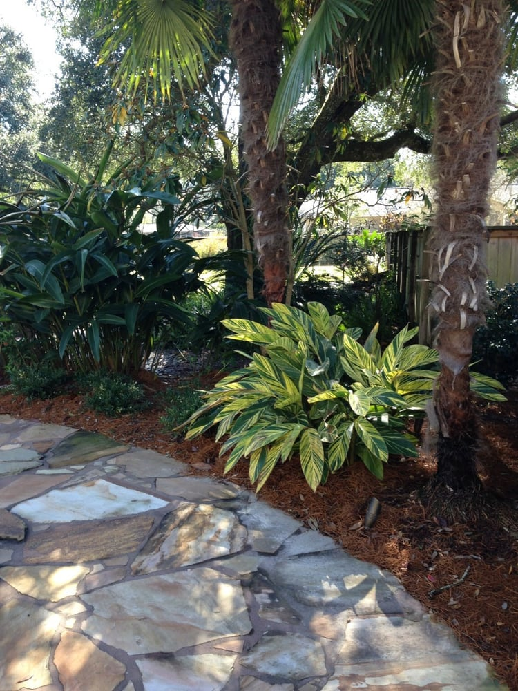 Photo of River City Landscaping - Baton Rouge, LA, United States - Photos For River City Landscaping - Yelp