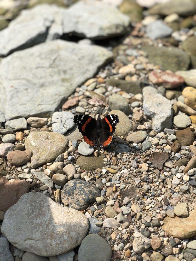 Pine Hills Nature Preserve: Waveland, IN