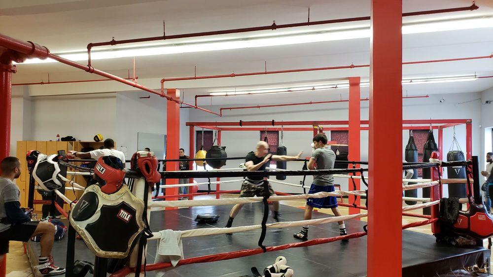 Boxingology