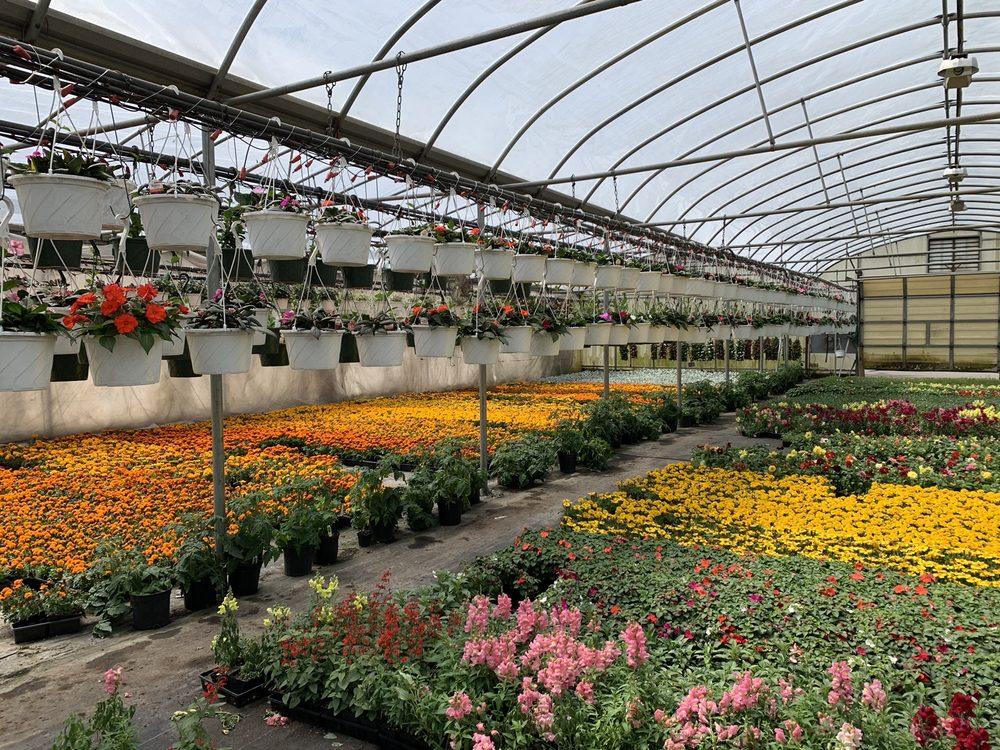 Godlewsky Farms: 215 Alphano Rd, Great Meadows, NJ