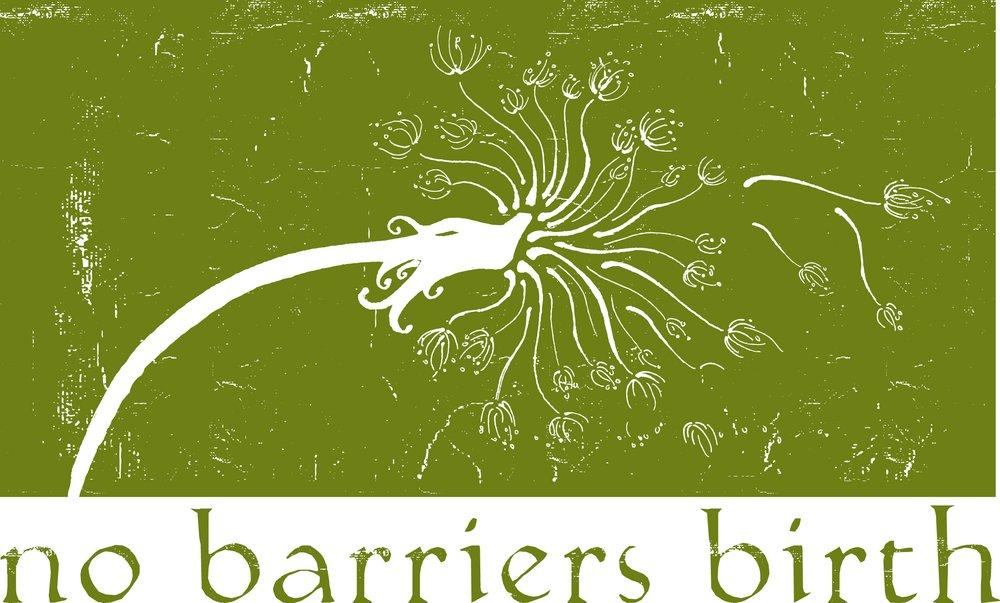 No Barriers Birth: Van, TX
